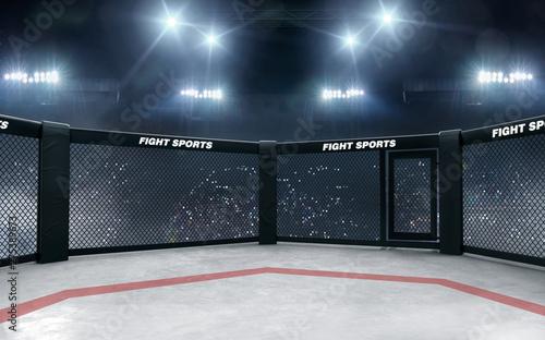 Fotomural  3D render MMA arena. MMA octagon cages.