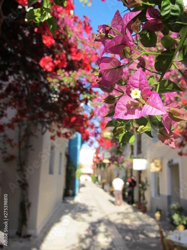 Fototapety, obrazy: griechenlandreise