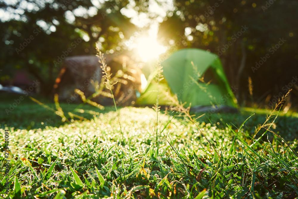 Fototapety, obrazy: Camping