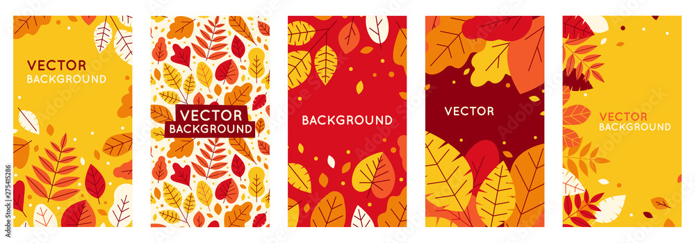 Fototapety, obrazy: Vector set of abstract backgrounds with copy space for text - autumn sale