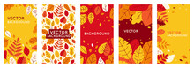 Vector Set Of Abstract Backgrounds With Copy Space For Text - Autumn Sale