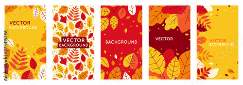 Fototapeta Vector set of abstract backgrounds with copy space for text - autumn sale obraz