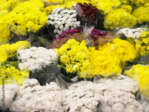 Foto op Aluminium Geel タイ王国 バンコク パーククローン花市場
