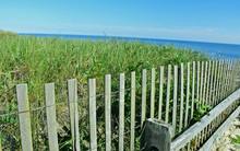 Snow Fence Cape Cod Beach