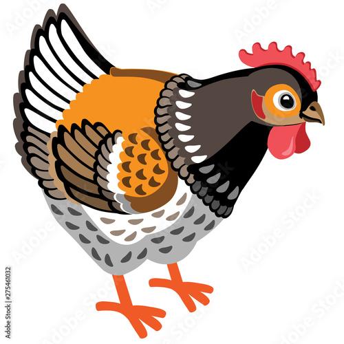 Stampa su Tela cartoon hen . Vector illustration isolated on white
