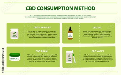 Fototapeta CBD Consumption Method horizontal infographic illustration about cannabis as herbal alternative medicine and chemical therapy, healthcare and medical science vector. obraz