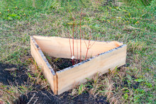 Tree Seedling Inside Protective Wooden Fence, Made By Own Hands
