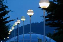 Lanterns In A Park