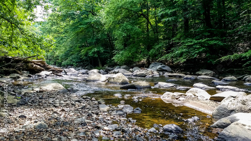 Canvas Prints Forest river one of the parks in Virginia America