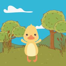 Duck Cartoon Design Vector Illustrator