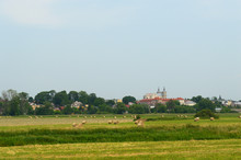 Field With Bales Of Hay With O...