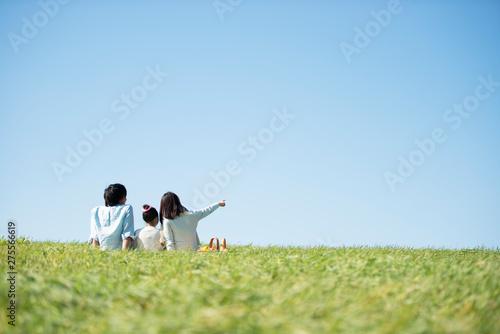 Canvastavla 草原でピクニックをするファミリーの後ろ姿