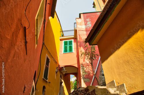Manarola colorful scenic streets Canvas Print