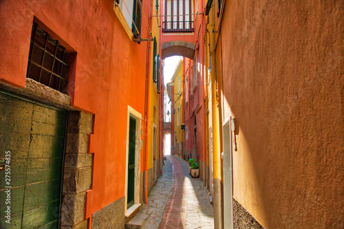 Photo  Manarola colorful scenic streets