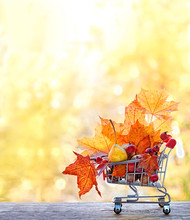 Thanksgiving Day Concept, Harvest, Autumn Sales. Maple Leaves, Acorns, Berries And Pear In Supermarket Cart. Fall Season. Copy Space