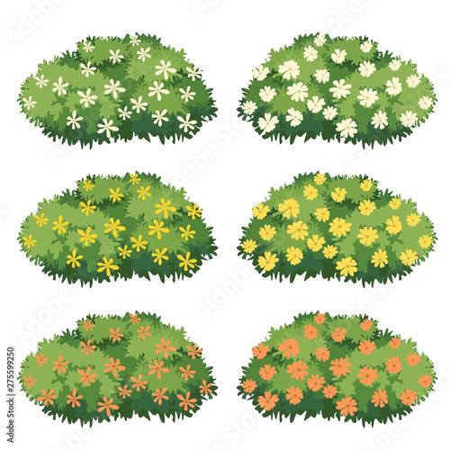 Fotografie, Obraz Shrubs and flowers vector.