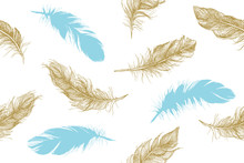 Hand Drawn Feathers. Doodle Sketch.