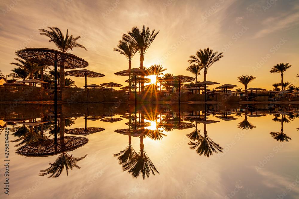 Fototapeta Beautiful romantic sunset over a sandy beach and palm trees. Egypt. Hurghada.