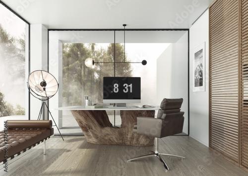 Fototapeta Gabinet w zaprojektowany w nowoczesnym minimalistycznym stylu.  obraz