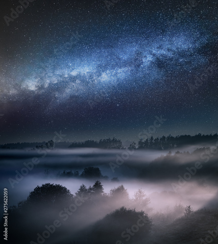 Obraz Milky way and foggy valley in forest - fototapety do salonu