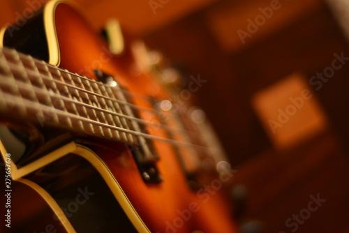 Photo bass guitar viola