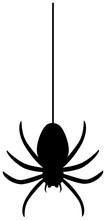 Spider Hanging On Spider Webs Thread Silhouette. Vector Illustration.