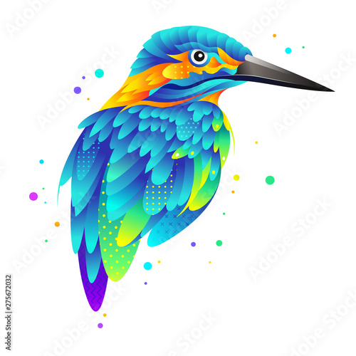 Fototapeta Colorful kingfisher isolated vector illustration with colorful feathers and wings for cover, poster and banner