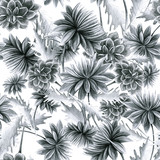 Summer, autumn flower chrysanthemum, field, garden beautiful plants, hand draws with a pencil, ink. Large chrysanthemums. Isolated background. Flowers in vintage style. Design for wallpaper, textiles - 275677403