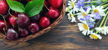 Cherries In The Basket Pot And Daisies On An Old Wooden Background.