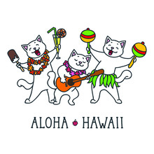 Aloha Hawaii. Cute Cats Having...