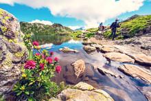 Charming Mountain Landscape Wi...