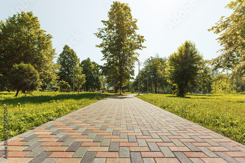 Obraz Colorful cobblestone road pavement and lawn divided by a concrete curb. - fototapety do salonu