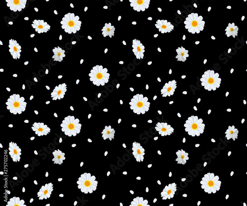 Fotografie, Obraz  seamless daisy flower and leaf pattern