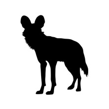 African Wild Dog Silhouette Vector