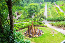 Park In Queen Sirikit Botanic ...