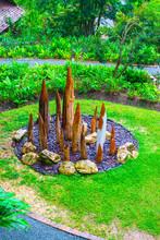 Park In Queen Sirikit Botanic Garden