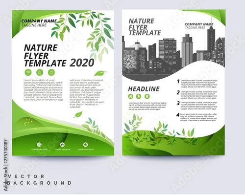Fototapeta Business green brochure layout template obraz