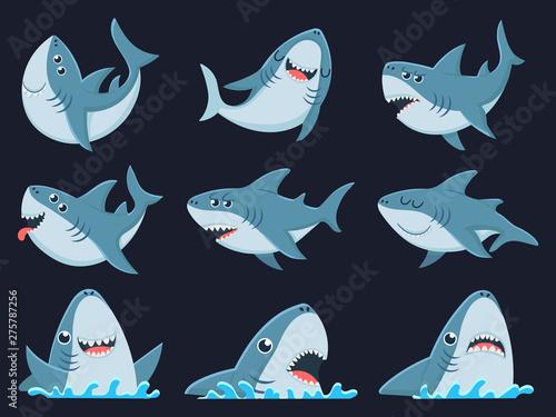 Fototapeta Ocean shark mascot