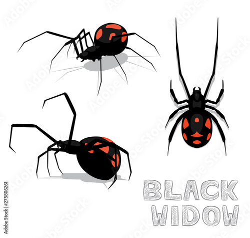 Spider Black Widow Cartoon Vector Illustration Wallpaper Mural