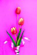 canvas print picture - Spring flower of multi color Tulips on pink background ,Flat lay image for holiday greeting card for Mother's day,Valentine's day, Woman's day and copy space space for your text
