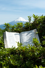 Bible Open In Psalms 90:2 Outdoors In Beautiful Landscape With Blue Sky. Background With Mount Fuji With Snow Covered Peak. Vertical Shot.