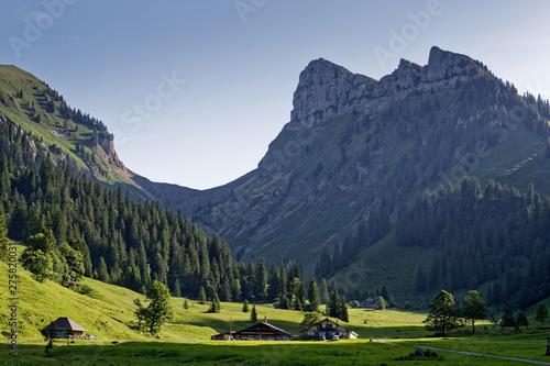 Foto op Plexiglas Europa Chalet dans la vallée de Justistal