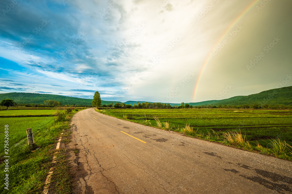 Fototapety, obrazy: Road in Rice Field with Rainbow