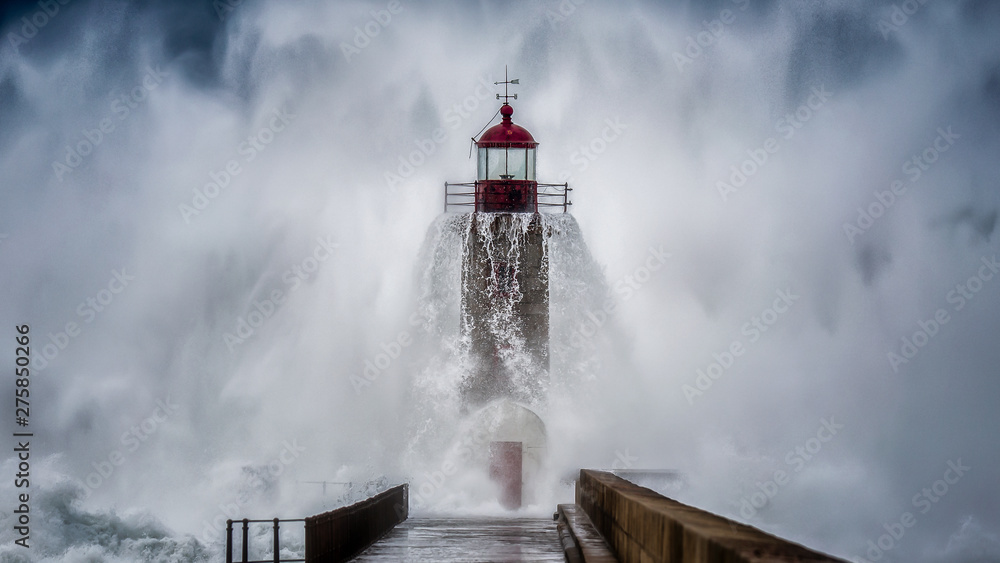 Fototapety, obrazy: Lighthouse crying