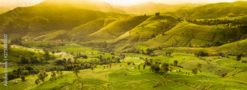 Garden Poster Rice fields Beautiful sunset at panoramic landscape of terrace rice field on mountain. Forest and agriculture field in autumn scenery.