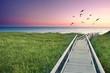 canvas print picture - der Weg zum Strand am Meer