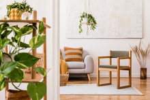 The Stylish Boho Interior Of Living Room In Nice Apartment With Gray Sofa, Armchair, Honey Yellow Plaid And Pillows, Plant And Elegant Accessories. Handmade Macrame Shelf Planter Hanger And Paintings.