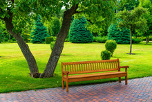 Empty Wooden Bench In A Beatif...