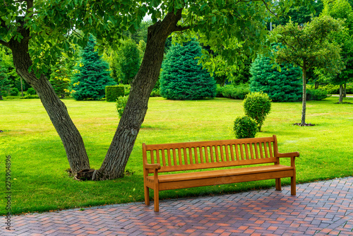 Photo Empty wooden bench in a beatiful sunny park.