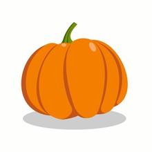 Orange Pumpkin On White Backgr...